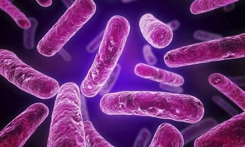 Бактериальные инфекции, вызывающие цистит и уретрит, при беременности могут быстро распространяться на другие органы мочевой системы