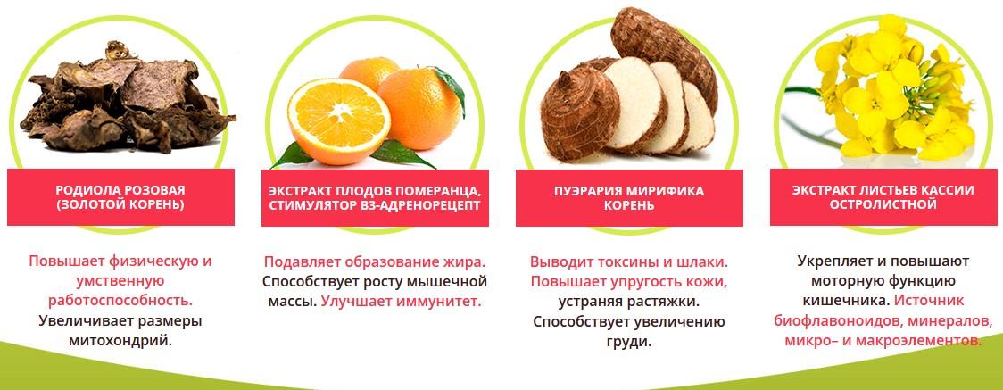 Состав средства Турбофит