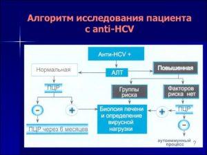 Алгоритм анализа на гепатит С
