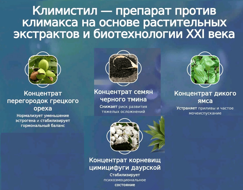 Состав Климистила