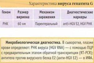 Характеристика вируса