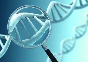 Обнаружение ДНК вируса