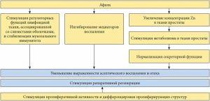Схема действия препарата Афала