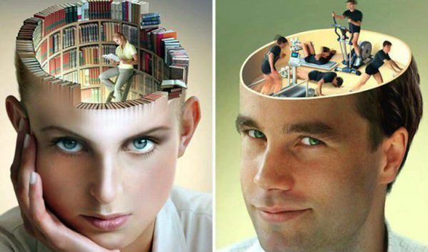 Мозговвая деятельность человека