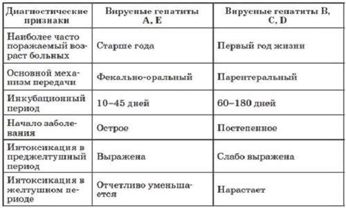 Особенности вирусных гепатитов
