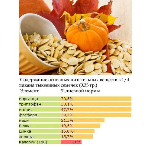Полезный состав тыквенных семечек