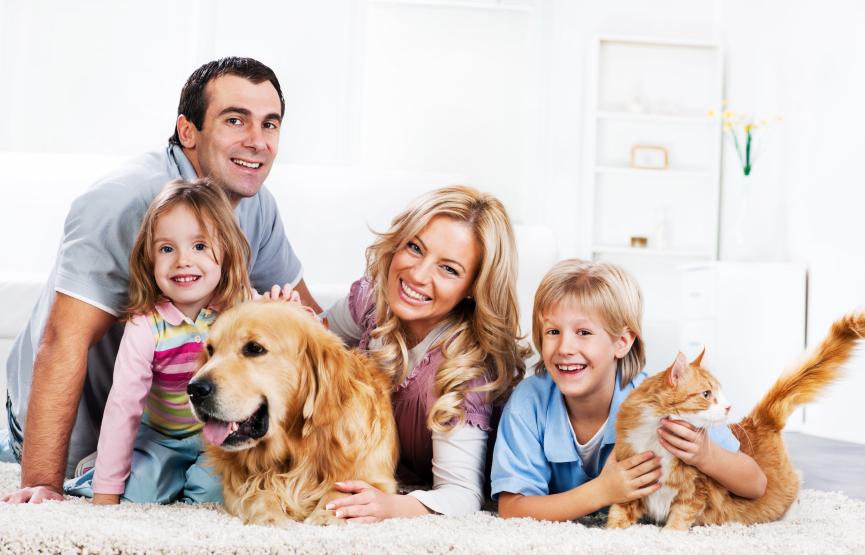 Картинки с веселыми животными для всей семьи случай