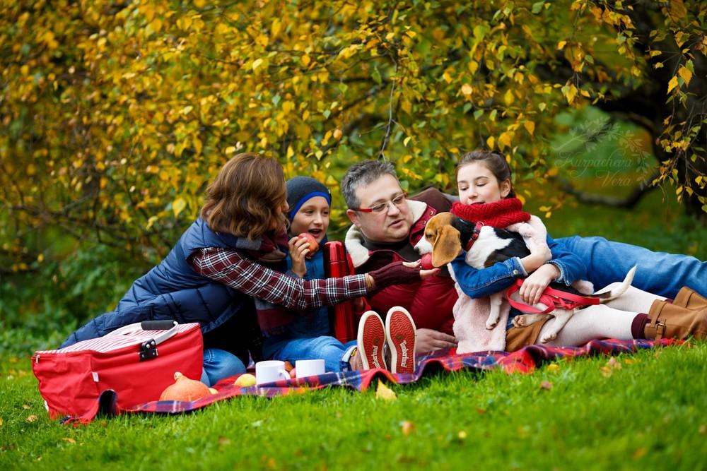 Семья с собакой на пикнике