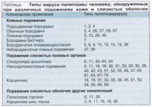 Штаммы папилломавируса человека